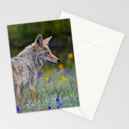 Wild Coyote Stationery Cards