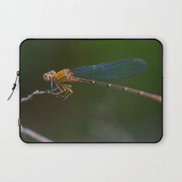 wandering glider Laptop Sleeve