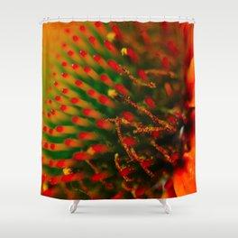 Gaillardia Aristata Pursh Shower Curtain