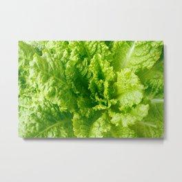 Lettuce closeup Metal Print