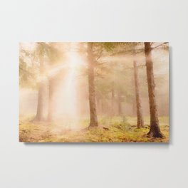 Scottish forest watercolor painting #3 Metal Print