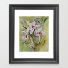 orchidée Framed Art Print
