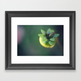 New Life Framed Art Print