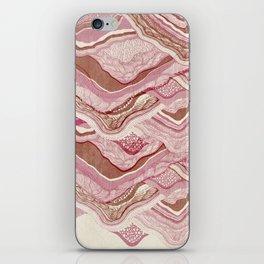 Stone Mountain  iPhone Skin