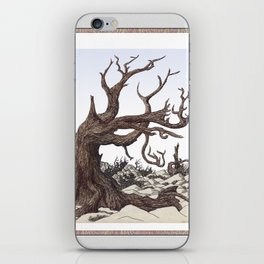 ANCIENT PINE SNAG VINTAGE PEN DRAWING iPhone Skin