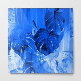 A Philodendron in blue Metal Print