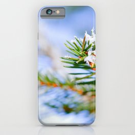 Bitter Cold, Snow-Covered Fir Tree iPhone Case