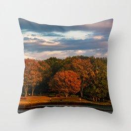 The Tree Across the Lake - Japanese Autumn Throw Pillow