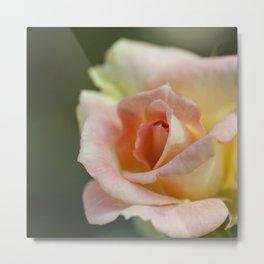 Flower Five Metal Print