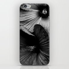 Dramatic Black and White Hibiscus Flowers Macro iPhone & iPod Skin