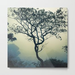 Misty Tree Metal Print