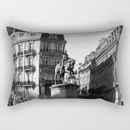 # 255 Rectangular Pillow