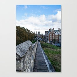 A walk along the wall Canvas Print