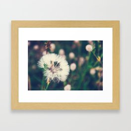 Lazy Summer Framed Art Print