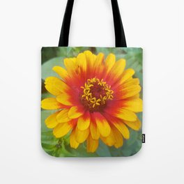 Zinnia on fire Tote Bag
