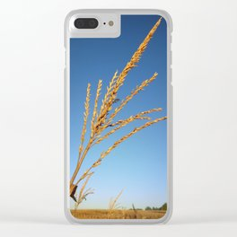 Corn Tassel Clear iPhone Case