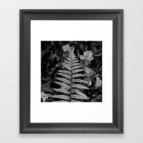 fern leaf VI Framed Art Print