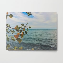 Summer waters Metal Print