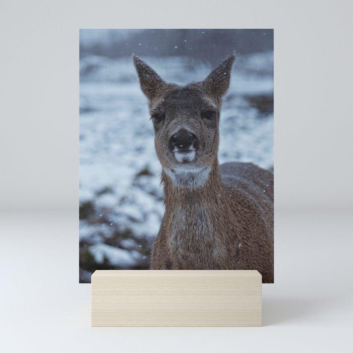 Deer in Snow Mini Art Print