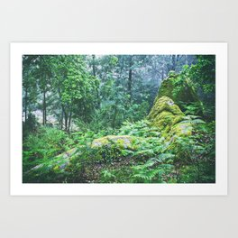 The Nature's green Art Print
