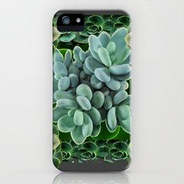 GARDEN OF GRAY-GREEN PINK SUCCULENTS iPhone Case