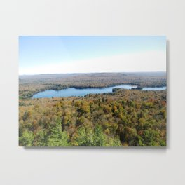 Above The Fall Metal Print