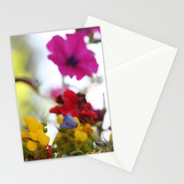 Colors of Nature Stationery Cards