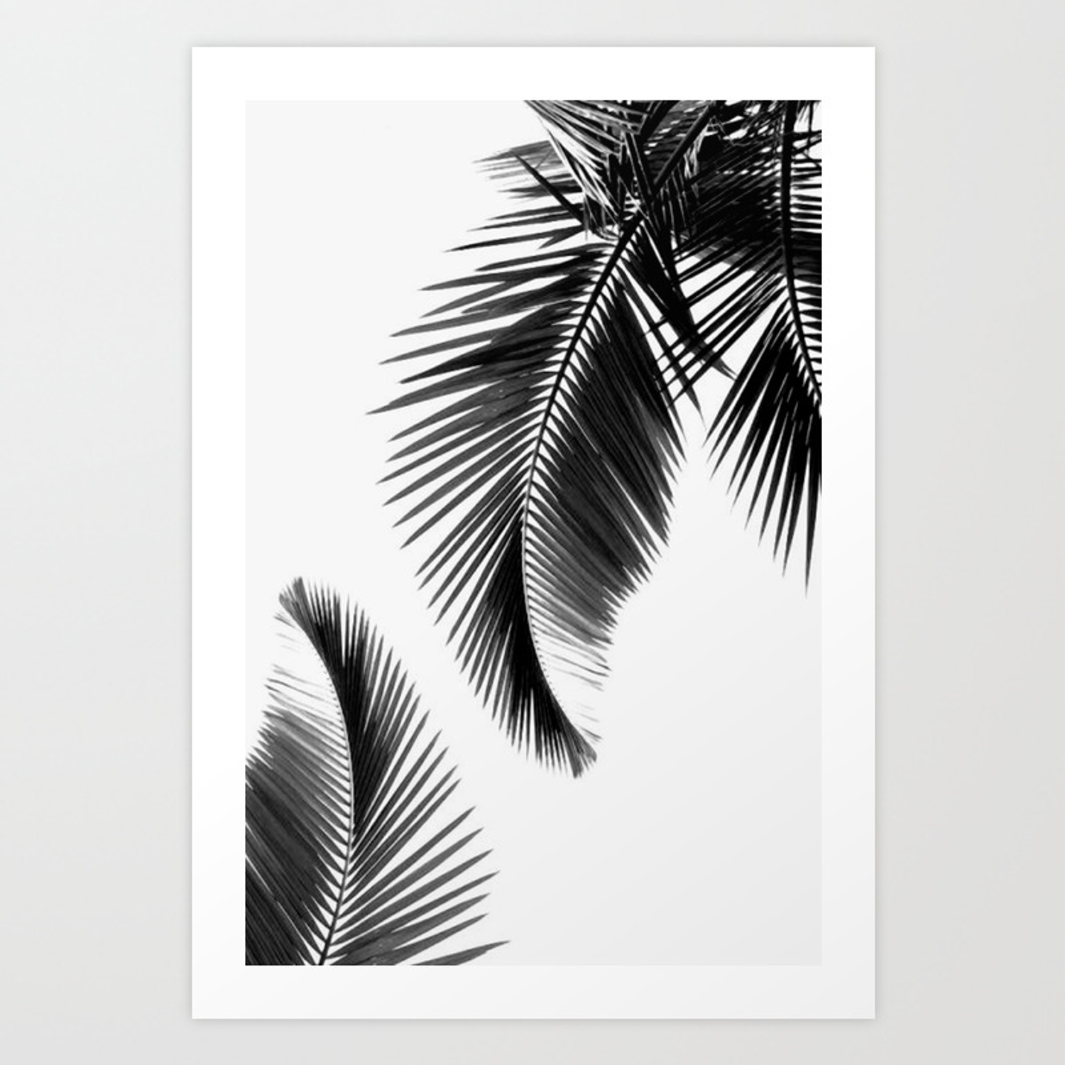 Black And White Leafs Art Print By Dxnid Society6