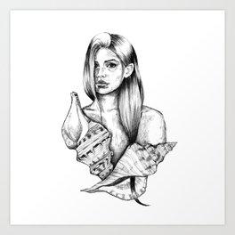 Conch Shell II Art Print
