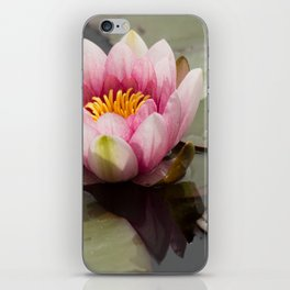 Lily of the Pond iPhone Skin