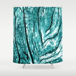 Driftwood Teal Shower Curtain