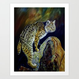 Bobcat  Painting  wildlife art  bold brushstrokes combined with vivid colours Alla Prima style favou Art Print