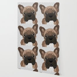 Brown Frenchie Puppy 001 Wallpaper