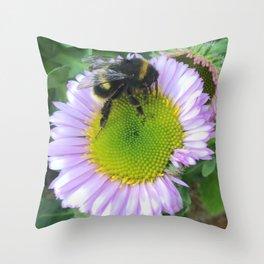 Bee on a daisy Throw Pillow