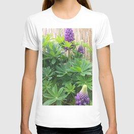 Lila Lupinie T-shirt