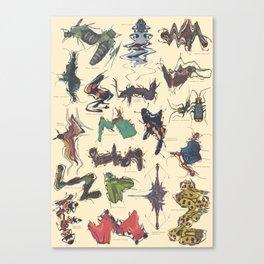 Skewed Beetles Canvas Print