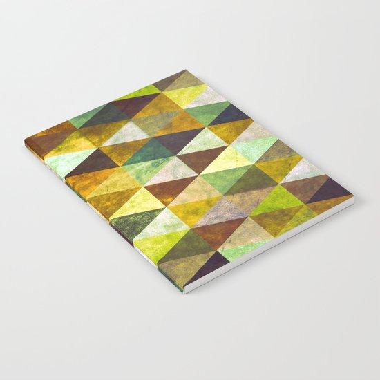Abstract #388 Cailin Rua Notebook