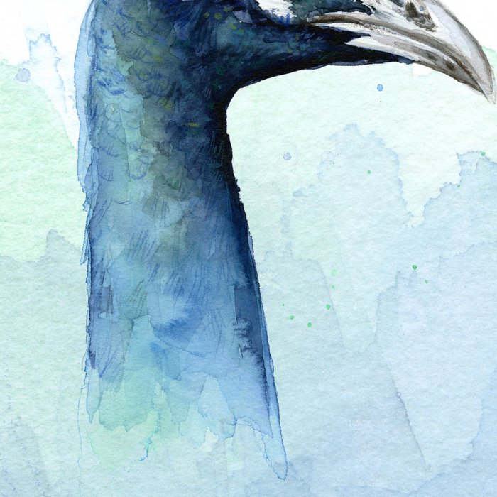 Peacock Watercolor Exotic Bird Animals Leggings