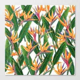 bird of paradise pattern Canvas Print
