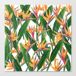 bird of paradise pattern Canvas Print