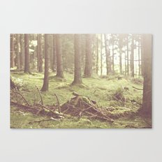 The magical forrest Canvas Print