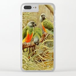 Kuhnert, Friedrich Wilhelm (1865-1926) - Wild Life of the World 1916 v.3 (Senegal Parrot) Clear iPhone Case