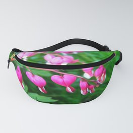 Bleeding Heart Flowers Photograph Fanny Pack