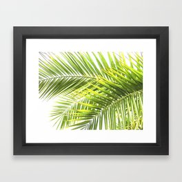 Palm leaves tropical illustration Framed Art Print
