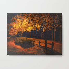 Autumn Evening Glow Metal Print