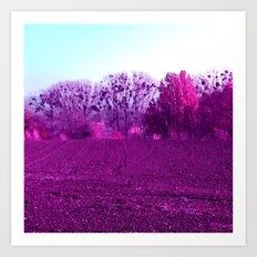 purple field II Art Print