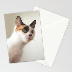 Investigation Mode Stationery Cards