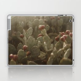 Cacti on Beach in Israel Laptop & iPad Skin