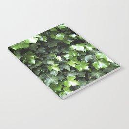 Evergreen Ivy Notebook
