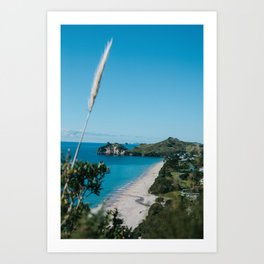 Cathedral Cove, New Zealand Art Print